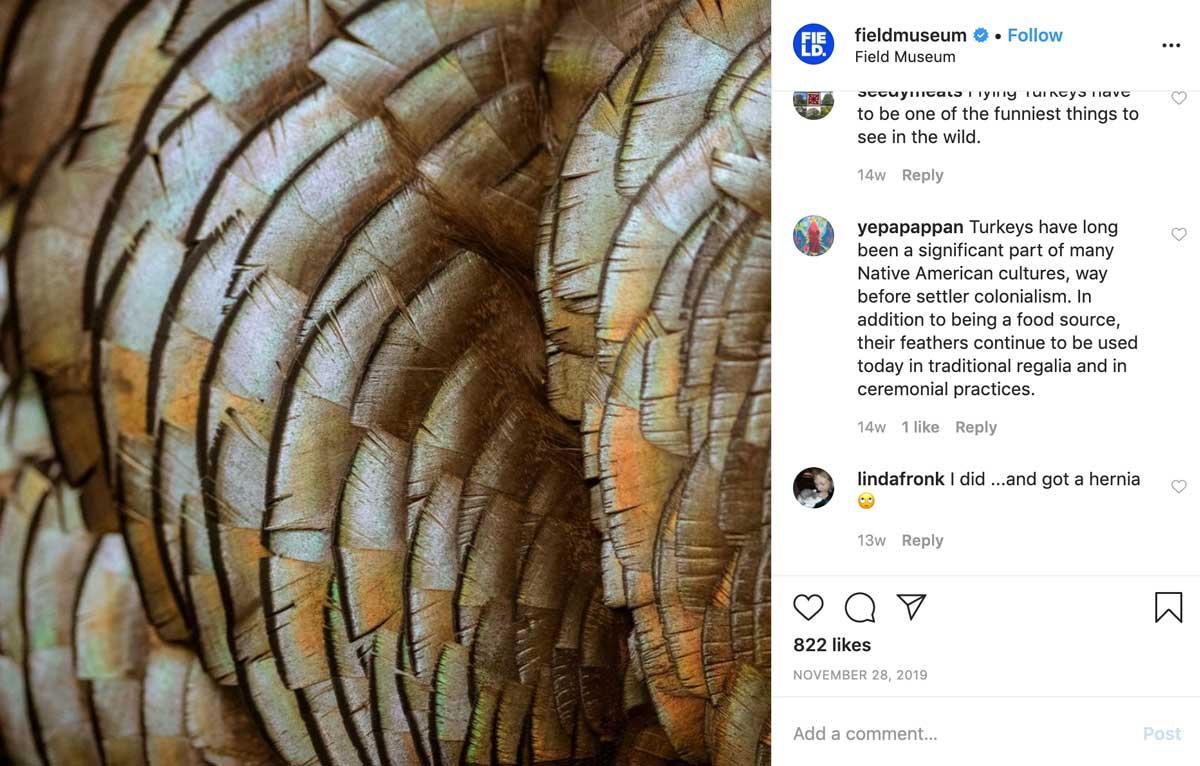 Field Museum Instagram